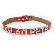 New York Apple Red Personalised Fashion Collar