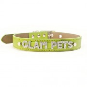 Green Personalised Collar